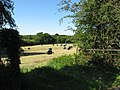 Field near Capel Llanilltern - geograph.org.uk - 2441664.jpg