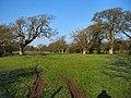 Fields near Beaupre - Vale of Glamorgan - geograph.org.uk - 97749.jpg