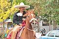 Fiestas Patrias Parade, South Park, Seattle, 2015 - 336 - the horses (21581195042).jpg
