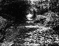 File-C4260-C4271--Unknown location--Flood damage -1917.09.13- (df3d08ea-b2d3-4cce-b05d-a98c31895466).jpg
