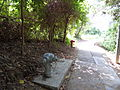 Fire hydrants on Lamma Island Family Walk.JPG