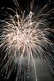 Fireworks - 20100724- DSC9129 (4831978227).jpg