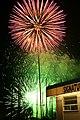 Fireworks - July 4, 2009 (3703905656).jpg