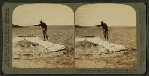 Fisherman at lake cooking in a boiling spring the trout just caught, Yellowstone Park, U.S.A, by Underwood & Underwood