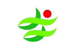 Nantan, Kyoto - Image: Flag of Nantan Kyoto