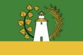 Flag of Starosakhchinskoe rural settlement.png