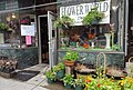Flower World in Troy, NY (35571681976).jpg