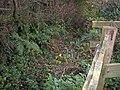 Footpath, rear of Llanteg Hall - geograph.org.uk - 1043477.jpg