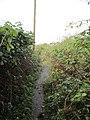 Footpath Neston - panoramio.jpg