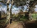 Footpath past Mount Pleasant - geograph.org.uk - 609963.jpg