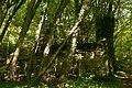 Forêt départementale de La Roche-Guyon n02.jpg