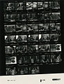 Ford B1144 NLGRF photo contact sheet (1976-08-19)(Gerald Ford Library).jpg