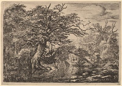 Etching of a dense forest scene