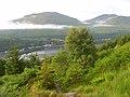 Forestry above Loch Long - geograph.org.uk - 864770.jpg