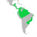 Formicariidae dist.png