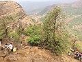 Fort view - panoramio (2).jpg