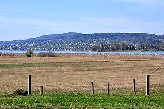 Frauenwinkel - the wetlands towards Ufenau island and Pfannenstiel area