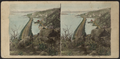 From Break-Neck Hill, looking North. Newburgh in the extreme distance, by E. & H.T. Anthony (Firm).png