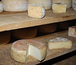 Fromages Ossau-Iraty 003.jpg
