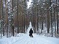 G. Miass, Chelyabinskaya oblast', Russia - panoramio (5).jpg