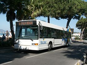 Image illustrative de l'article Palm Bus