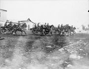 Galloping New Zealanders Jericho