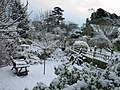 Gardens in the snow - geograph.org.uk - 677134.jpg