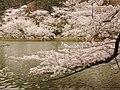 Garyu Park - panoramio.jpg