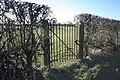 Gate into Field - geograph.org.uk - 1150643.jpg