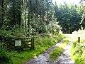 Gateway into Dipton Wood - geograph.org.uk - 935589.jpg