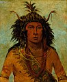 George Catlin - Say-say-gon, Hail Storm, War Chief - 1985.66.532 - Smithsonian American Art Museum.jpg