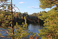 Gfp-wisconsin-mirror-lake-state-park-through-pine-trees.jpg