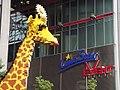 Giraffe - geo.hlipp.de - 26875.jpg