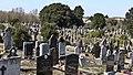 Glasnevin Cemetery (4512998630).jpg