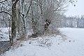 Glems im Winter (4).jpg