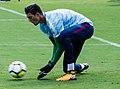 Goalkeeper Arijanet Muric (36243874430-cropped2).jpg