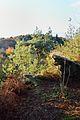 Gorges de Villiers (paysage).jpg