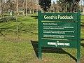 Goschs Paddock Melbourne 20180726-002.jpg
