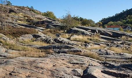Granite cliffs at Loddebo.jpg