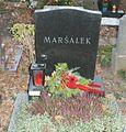 Grave Marsalek Johann.jpg