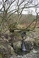 Gully run off - geograph.org.uk - 741967.jpg
