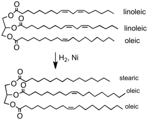 Hydrogenation - Partial hydrogenation of a typical plant oil to a typical component of margarine. Most of the C=C double bonds are removed in this process, which elevates the melting point of the product.