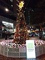 HK 上環 Sheung Wan 摩利臣街 Morrison Street 永樂街 Wing Lok Street public square 假日行人坊 Holiday bazaar Xmas tree decorations lighting December 2020 SS2 01.jpg