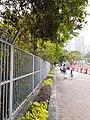 HK CWB 銅鑼灣 Causeway Bay 高士威道 Causeway Road 火龍徑 Fire Dragon Path October 2019 SS2 01.jpg