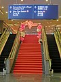 HK WC HKCEC 灣仔 香港會議展覽中心 Wan Chai interior escalators n stairs Oct-2013 red carpet.JPG