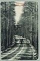 Harjutie, Harjutien korkea osa, Tarkemmin määrittelemätön paikka, 1896 PK0118.jpg