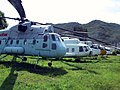 Helicopter Collection (37072654545).jpg