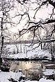 Helsingborg 2010-12-19 (5477081890).jpg