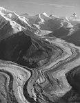 Herron Glacier, valley glacier, August 8, 1957 (GLACIERS 5150).jpg
