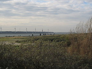 Hook of Holland - Dunes